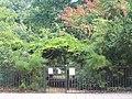 Eccleston Square Gardens, Pimlico - geograph.org.uk - 60991.jpg