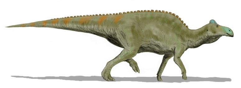 Edmontosaurus BW