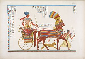 Carlo Lasinio - Image: Egyptian Chariot (colour)