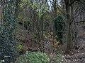Ellar Carr Gorge - panoramio.jpg