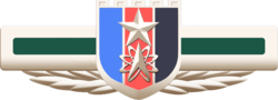Emblem of People's Liberation Army Strategic Support Force.png