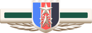 People's Liberation Army Strategic Support Force - Image: Emblem of People's Liberation Army Strategic Support Force
