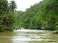 End of Bohol, Loboc river cruise - panoramio.jpg