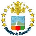 Escudo del Municipio Guananico.png
