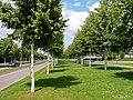 Ettlingen Stadteingang 5.jpg