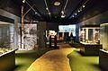 Exposició El Tresor dels Bàrbars al Museu Arqueològic d'Alacant.JPG