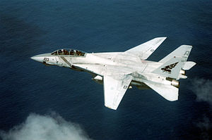 F-14B VF-143 overhead left side view.JPEG