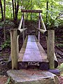 FLT M27 14.9 mi - Bridge over Dry Brook, 32' long, 2x8x48 deck, tel pole stringers and posts, split log hand rail, 6.5 ' to drainage, screen deck, 2004 - panoramio.jpg