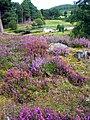 Fairy Loch Glen Tanar - geograph.org.uk - 600646.jpg