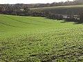 Farmland, Peppard - geograph.org.uk - 1776078.jpg