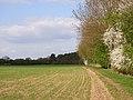 Farmland next to Dipple Wood - geograph.org.uk - 162880.jpg