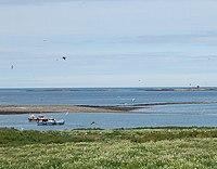 Farne Islands, boats - geograph.org.uk - 1096875.jpg