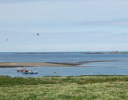 Farne Islands, boats - geograph.org.uk - 1096875.jpg