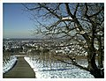 February Minus 10 Grad Celsius View Denzlingen Germany - Magic Rhine Valley Photography 2013 - panoramio.jpg