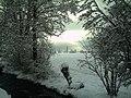 February Winter Light Glottertal - Mythos Black Forest Photography 2013 - panoramio (17).jpg