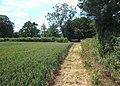 Field corner, St Margaret South Elmham - geograph.org.uk - 863940.jpg