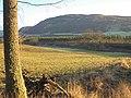 Fields and railway embankment - geograph.org.uk - 105974.jpg