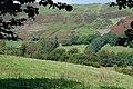 Fields near Geufron - geograph.org.uk - 968469.jpg