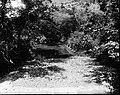 File-C4260-C4271--Unknown location--Flood damage -1917.09.13- (962ac7c8-ecb4-4ce1-b51c-c7e1be1d7ba6).jpg