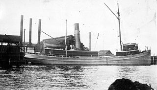 USS <i>G. H. McNeal</i> (SP-312)