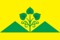 Flag of Bakhsytsky (Yakutia).png