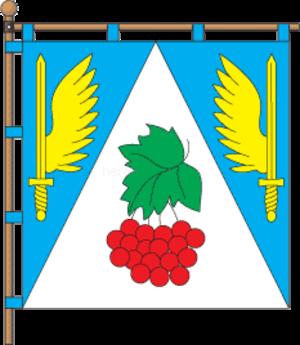 Novyi Kalyniv - Image: Flag of Novyi Kalyniv