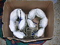 Flickr - Israel Defense Forces - Explosive Belts Found on Tanzim Operatives.jpg