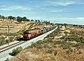 Flickr - nmorao - Areia, Azinheira dos Barros, 2008.08.01.jpg