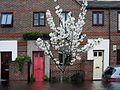 Flooded Stonechat Square, Beckton, London.jpg