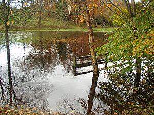 Lough Oughter - Autumn flooding following heavy rainfall