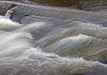 Flow (2328798164).jpg