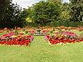 Flower beds in Queen Mary's Garden, Regent's Park - geograph.org.uk - 921162.jpg