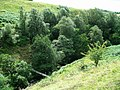 Footbridge - geograph.org.uk - 223484.jpg