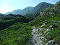 Footpath - geograph.org.uk - 203483.jpg