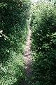 Footpath - geograph.org.uk - 462848.jpg