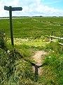 Footpath Junction, Pagham Harbour - geograph.org.uk - 501476.jpg