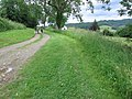 Footpath at Holts Down - geograph.org.uk - 469361.jpg