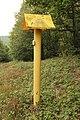 Forêt Départementale de Méridon à Chevreuse le 29 septembre 2017 - 56.jpg