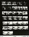 Ford B2122 NLGRF photo contact sheet (1976-11-01)(Gerald Ford Library).jpg