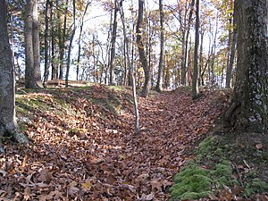 National Register of Historic Places listings in Hampshire County, West Virginia - Image: Fort Mill Ridge Civil War Trenches Romney WV 2008 10 30 18
