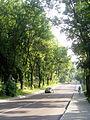 Franka Street, Lviv (04).jpg