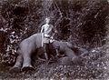 Franz Ferdinand von Österreich-Este auf Elefantenjagd 1893.jpg