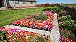 Front garden IMG 1293 (14541272940).jpg