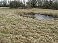 Frozen ponds in rough pasture near Oldhouse Farm - geograph.org.uk - 1691731.jpg