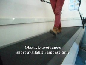 Íomhá:Functional-gait-rehabilitation-in-elderly-people-following-a-fall-related-hip-fracture-using-a-1471-2318-13-34-S1.ogv
