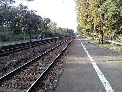 How to get to Gödöllő Állami Telepek with public transit - About the place