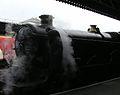 GWR Castle Class 5029 Nunney Castle, Pathfinder rail tour, Bristol Temple Meads March 2005 (9922412464).jpg