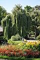 Garden Saint-Roch, 2015, summer.JPG