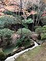 Garden near Tsukubai of Chisoku in Ryoanji Temple 1.jpg