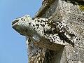 Gargouille NDdF (2).jpg